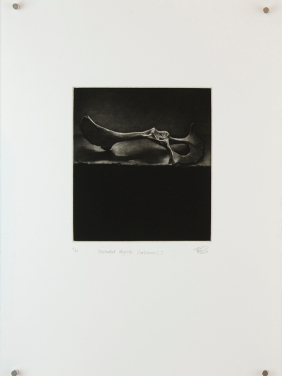 'discarded objects (calcium) i', 2010 | mezzotint print | edition of 20 | 20 x 18 cm (plate size)