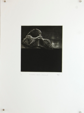 'discarded objects (calcium) ii', 2010 | mezzotint print | edition of 20 | 20 x 18 cm (plate size)