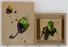 'signs of trouble (plants)' 2015 | pastel pencil, powdered graphite and ink on three wood panels | 20 x 25 cm | SOLD