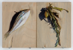 'signs of trouble (fish and phyllospora)' 2015 | pastel pencil and ink on two wood panels | 20 x 30 cm