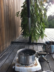dyeing on the deck